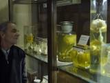 Tajemnicze poznańskie muzeum, które... nigdy nie zostanie otwarte