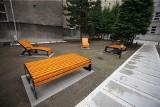 Nowy ogród w centrum Katowic: każdy może wejść. To Ogrody Nauki w nowym kampusie Politechniki Śląskiej. Zobaczcie, jak wygląda