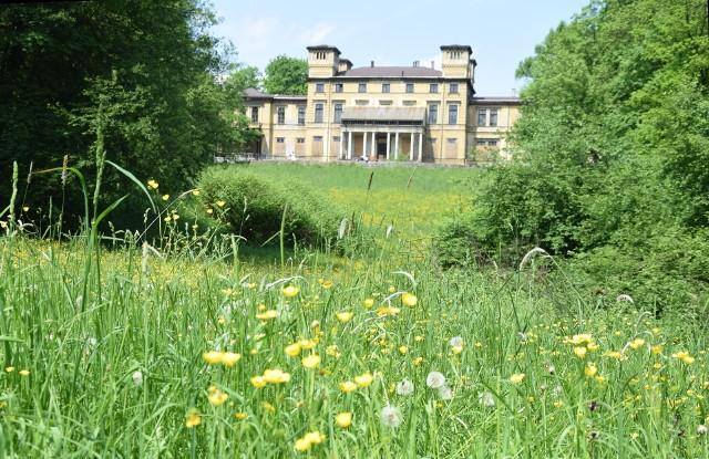 Pałac Potockich w Krzeszowicach znajduje się na najwyższym punkcie parku zwanym dawniej Górą Różaną. Miejsce na pałac zrobiono przesiedlając chłopów i przenosząc ich gospodarstwa na zachodni skraj ówczesnej wsi. Dziś tamta część Krzeszowic nazywa się Nowa Wieś