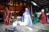 W parafii św. Józefa w Opolu Szczepanowicach budowniczy już stawiają szopkę, która w czasie świąt Bożego Narodzenia przyciąga tłumy