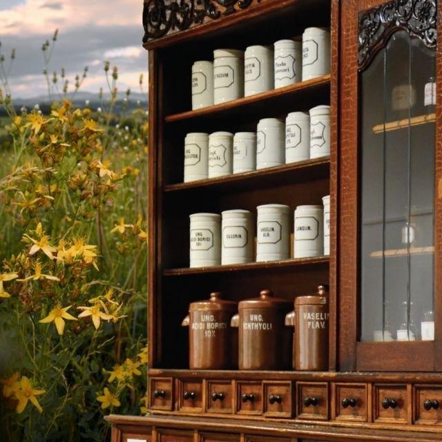 Na wystawie Przyszedł znachor do apteki… Ziołolecznictwo i aptekarstwo na Podlasiu pojawią się eksponaty z przedwojennych aptek w regionie. Zarówno stare naczynia do przechowywania leków, jak i narzędzia laboratoryjne. Dodatkowo firma Dary Natury będzie sprzedawać w muzeum ekologiczne herbaty.