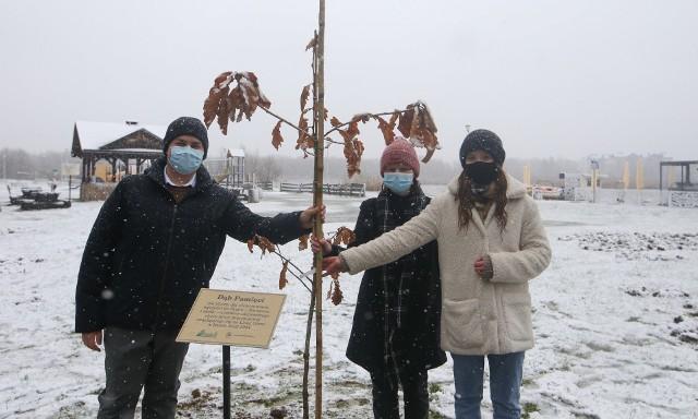Dąb pamięci upamiętniający powstanie obozu pracy na Lisiej Górze posadzili uczniowie I LO w Rzeszowie.