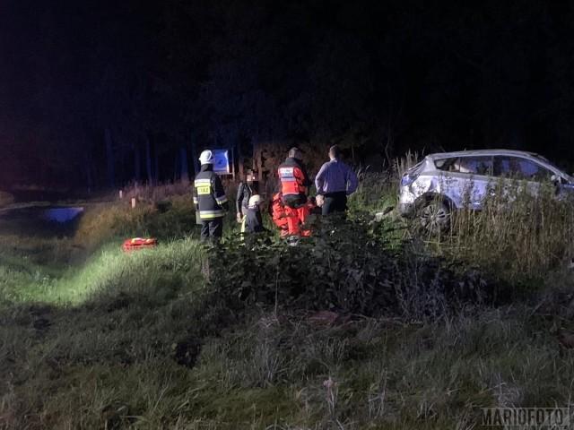 Wypadek w Bierdzanach na drodze krajowej 45. Ze wstępnych ustaleń policjantów wynika, że doszło tam do zderzenia dwóch samochodów - suzuki i volkswagena. W wypadku, do którego doszło o 20:10 w niedzielę, zostały poszkodowane dwie osoby, które pogotowie zabrało do szpitala. Sprawca, który spowodował wypadek, był nietrzeźwy. Na krajowej 45 w miejscu wypadku są utrudnienia.