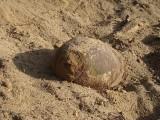 Kordowo. Pod Ostrołęką znaleziono 100-kilogramową bombę lotniczą z czasów II wojny światowej