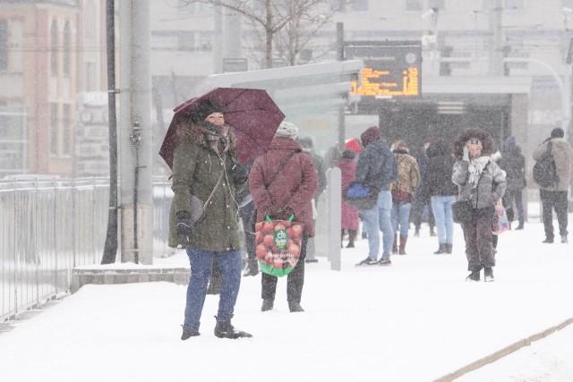 Tak wygląda zasypany śniegiem Poznań w poniedziałek, 8 lutego. Przejdź dalej i zobacz zdjęcia --->