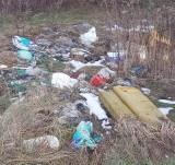 Ludzie dalej wywalają śmieci gdzie popadnie. Dzikie śmietnisko w gminie Gubin, w okolicach Pola