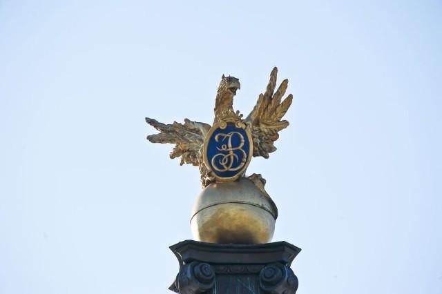 Gryf to jeden z symboli Białegostoku
