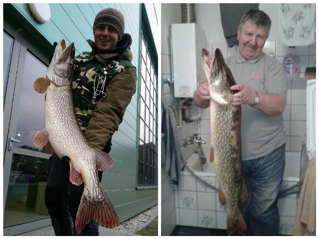 Z lewej Michał Dziedzic z największym szczupakiem w swoim życiu - 11,04 kg 112 cm. Z prawej Michał Adamczak z okazem ważącym 8,2 kg i mierzącym 105 cm.