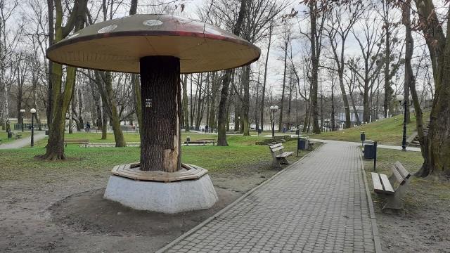 Grzyb w Parku Miejskim wymaga renowacji Zobaczkolejnezdjęcia. Przesuwajzdjęcia w prawo - naciśnij strzałkę lub przycisk NASTĘPNE