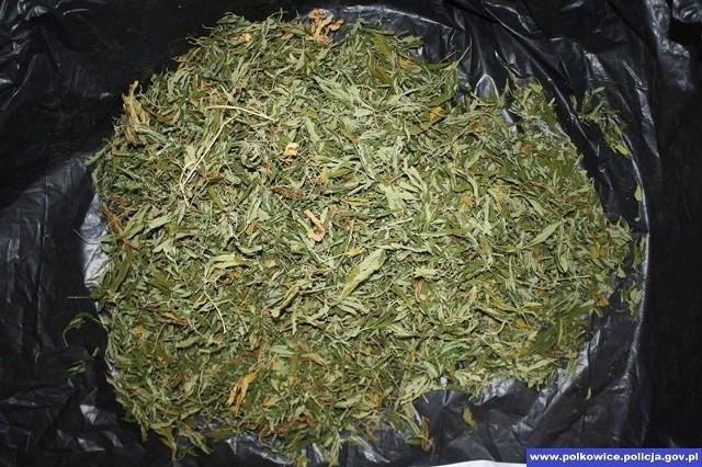 Marihuana w przydomowej stodole