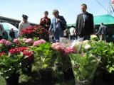 Wiosenne Targi Ogrodnicze w Szepietowie