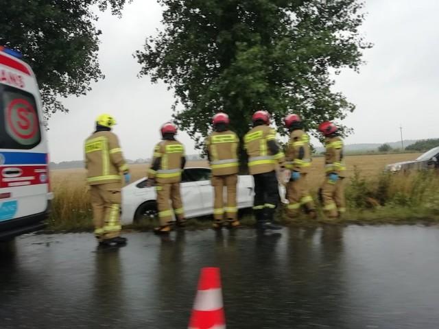 Do wypadku doszło około godziny 17, na drodze 395 pomiędzy Strzelinem a Ludowem Polskim na tak zwanych esach.