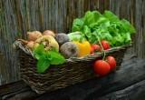 Długi producentów żywności. Niektórzy wpadli w spiralę kredytową i walczą o przetrwanie