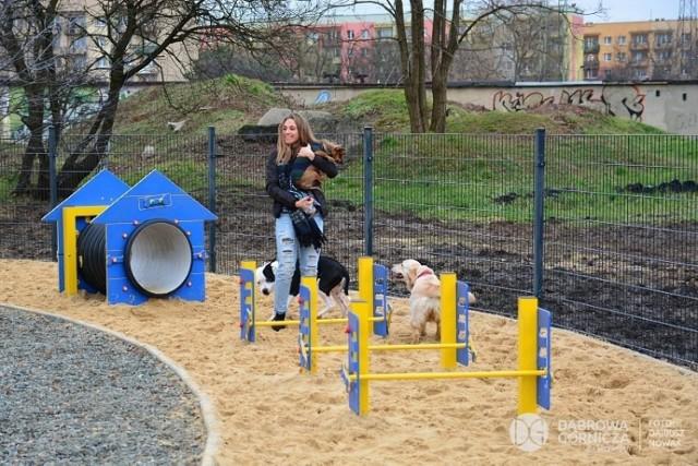 Na Manhattanie powstanie m.in. wybieg dla psów. Wcześniej taki powstał już na Podlesiu