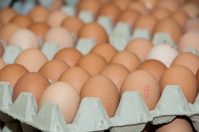 """Ostrzeżenie dotyczy jaj pochodzących z fermy w Tychowie Nowym (województwo świętokrzyskie), które są sprzedawane pod nazwą  """"Jaja z chowu klatkowego kl. wag. M"""". Niebezpieczne dla zdrowia mogą być jaja oznaczone na skorupce numerem 3PL26111314 oraz dacie ważności 23 lipca i 24 lipca 2018 r."""