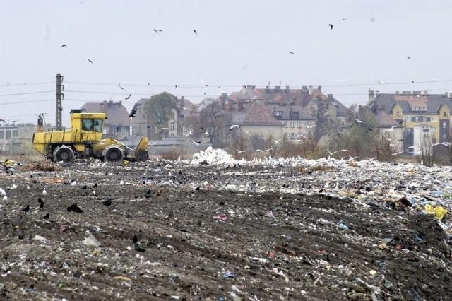 Wysypisko śmieci w Opolu.
