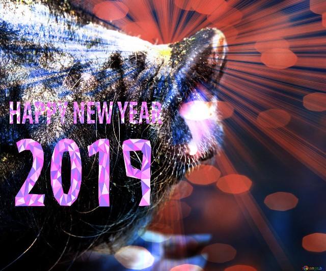 życzenia Noworoczne 2019 Piękne życzenia Na Nowy Rok
