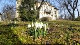 Tajemniczy ogród w Gorzowie: wiosna już do niego przyszła! Jakie kolory!