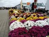 Sobota na giełdzie rolno-towarowej. Ceny kwiatów, owoców i warzyw mogą zaskoczyć