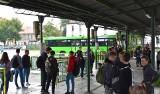 Dodatkowe kursy w soboty. Nowe połączenia autobusowe z Zielonej Góry do Krosna Odrzańskiego