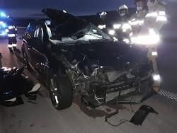 Wypadek na A1 w nocy w czwartek (27 maja) nad ranem. Tragicznie zakończyło się wtargnięcie łosia na autostradę A1 między węzłami Łódź Północ i Brzeziny.