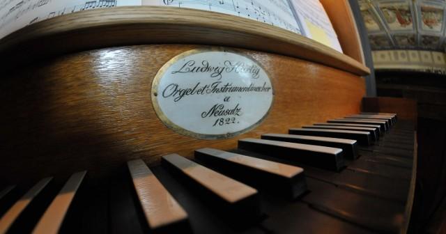 Po renowacji klawiatury organów nowe klawisze podstawowe są z hebanu i mają ciemne nakładki z bejcowanej gruszy, natomiast nakładki na klawisze durowe i molowe, w tym wypadku białe, zrobiono z kości wołu