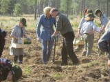 Para prezydencka sadziła las na terenach po huraganie 100-lecia (zdjęcia)