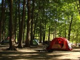 Wyrzucili rolników i zbudowali nadmorski camping. Odszkodowanie za bezprawne wywłaszczenie w PRL-u
