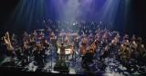 Artyści z Bydgoszczy i ze świata muzyką, śpiewem i tańcem oddali hołd ofiarom Covid-19. Zobacz poruszający klip [wideo]