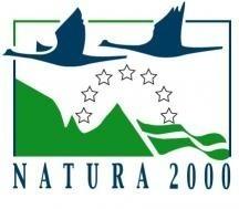 Wniosek radnej Stefanii Michaliszyn, aby całkowicie odrzucić propozycję utworzenia obszaru chronionego, nie przyszedł w głosowaniu. (logo projektu Natura 2000)