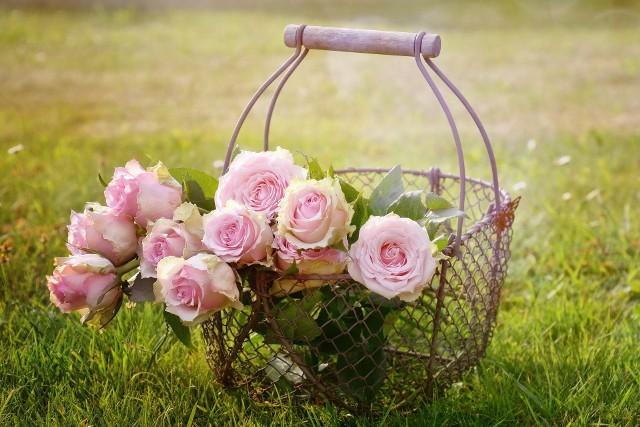 Dzień Matki w 2021 rok. Sprawdź, kiedy będzie Dzień Matki! Piękne, życzenia na dzień matki!  Dzień matki już 26 maja. Z tej okazji przygotowaliśmy najlepsze życzenia!