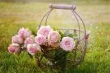Życzenia na Dzień Matki od dorosłych dzieci. Piękne życzenia dla mamy. Mądre i wzruszające życzenia na Dzień Matki 26.05.2021