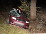 Śmiertelny wypadek: Skoda uderzyła w drzewo. Kobieta zginęła