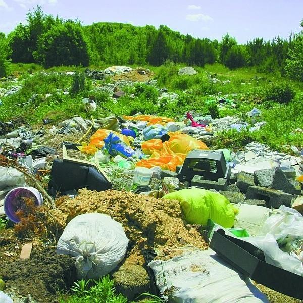 W wielkim dole tuż przy drodze prowadzącej do Sowlan można znaleźć prawie wszystko: kawałki eternitu, ubrania, tapczany, buty, resztki materiałów malarskich, stare telewizory czy urządzenia sanitarne...