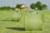 Uczniowie będą dobrymi producentami rolnymi. Olimpiada w Kowalu
