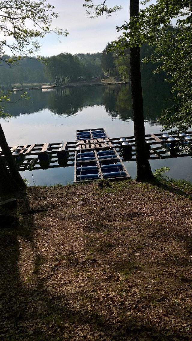 Pomost dla rowerów wodnych na jeziorze Łagowskim. Tuż obok zwaliło się drzewo