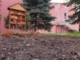 Teatr Muzyczny proekologiczny, czyli domki dla owadów i rośliny miododajne upiększą teren wokół placówki przy ul. Północnej