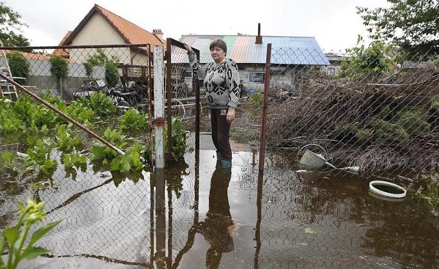Powódź w TrześniPowódź w Trześni.