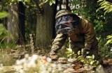 Inwazja os i szerszeni na Opolszczyźnie. Z owadami walczą strażacy