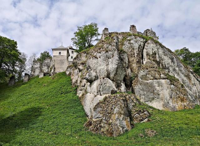 Ruiny Zamku w Ojcowie, Kazimierza Wielkiego z 2. połowy XIV wieku.