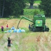 Tegoroczne plony były dobre - zwłaszcza zbóż ozimych - mówią rolnicy