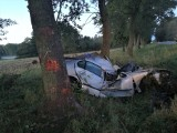 Boćki. Tragiczny wypadek na DK 19. Kobieta uderzyła w łosia, a potem w drzewo. Zginęła na miejscu [zdjęcia]