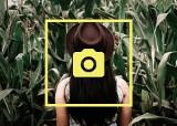 Kukurydziary - jesienny trend na Instagramie. Wyszły i pozują w uprawach [zdjęcia]
