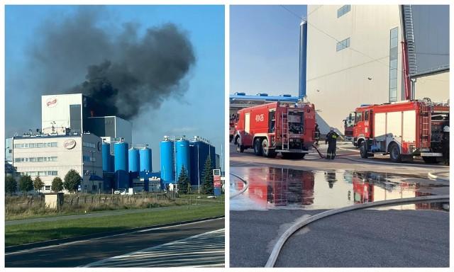 Pożar w mleczarni Bielmlek w Bielsku Podlaskim. Płonął dach suszarni. Strażacy walczyli z ogniem na wysokości 40 metrów
