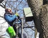 Na Szachtach w Poznaniu zawieszono budki lęgowe dla nietoperzy, gągołów i puszczyków. Wisi tam już w sumie 75 budek