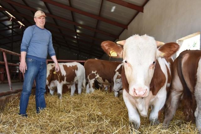 Waldemar Ciesielski, rolnik z Barłożna (woj. pomorskie) gospodaruje na ok. 700 ha. Ma ponad 200 sztuk bydła (simentalskie i rasy limousine). Wśród opasów są także zwierzęta rasy holsztyno-fryzyjskiej