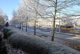 Wrocław: W nocy temperatura spadła poniżej -7 stopni [PROGNOZA]