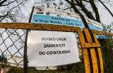 Ratusz sprawdzi czy sztuczne boiska w Bydgoszczy nas trują