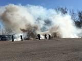 Ładunek wybuchowy przy ul. Pienistej, czyli dzień otwarty w oddziale prewencji łódzkiej policji [FILM, zdjęcia]