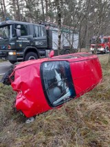 Po zderzeniu z sarną auto wylądowało w rowie (ZDJĘCIA)